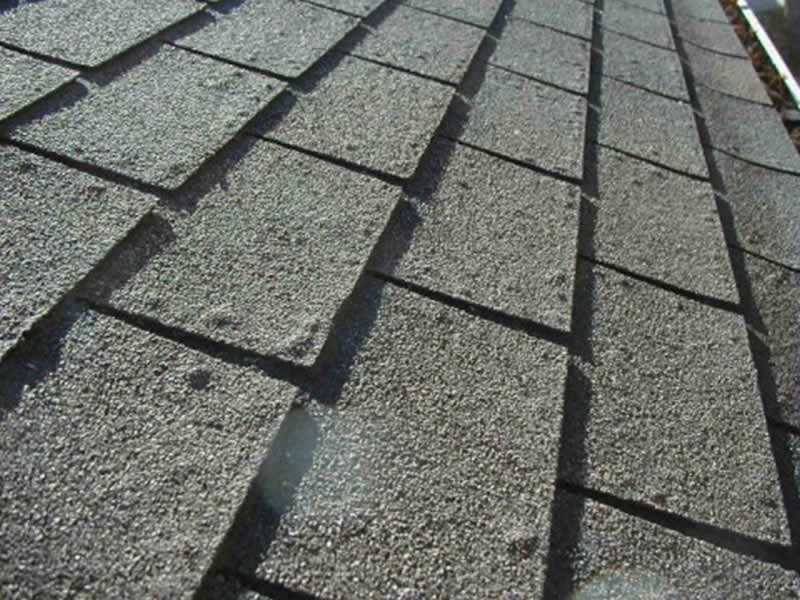 Roof Blisters