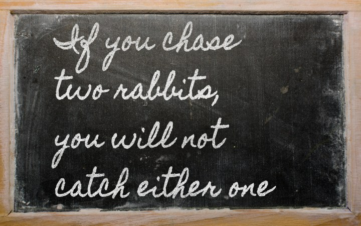 expression - If you chase two rabbits, you will not catch eithe