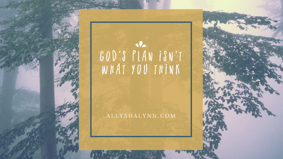 God's Plan Isn't What You Think title card