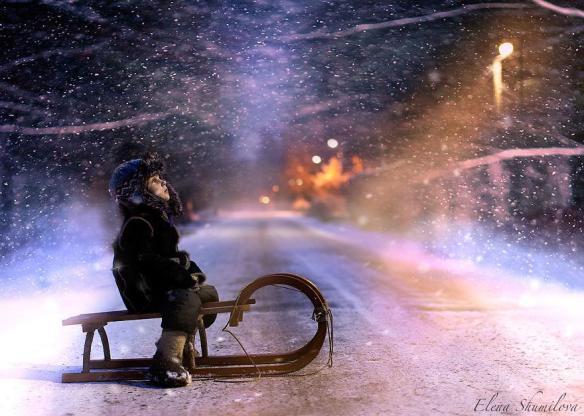 Elena-Shumilova-sleigh