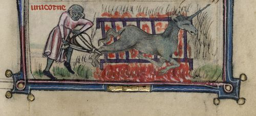 Grilled Unicorn