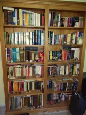 Books in upstairs bookcase photo