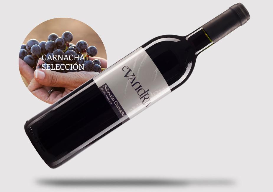 vinos_GARNACHA1