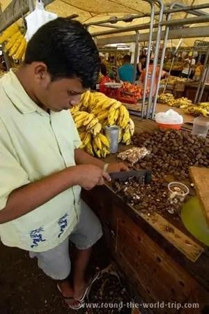 Pelando castanha de caju no mercado Ver-o-Peso