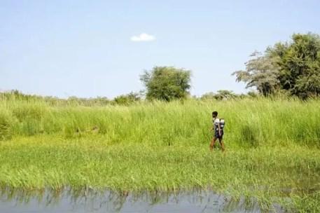 Jovem mãe caminhando nas margens de um braço do Delta do Okavango
