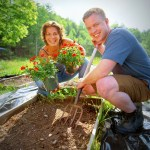 How To Build Cheap And Productive Raised Garden Beds The Old Farmer S Almanac