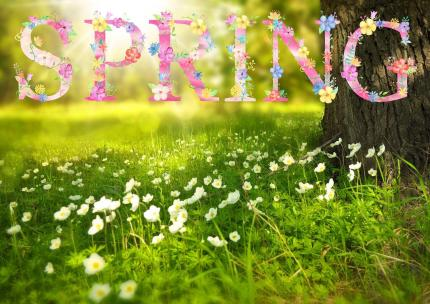 Welcome Spring Equinox
