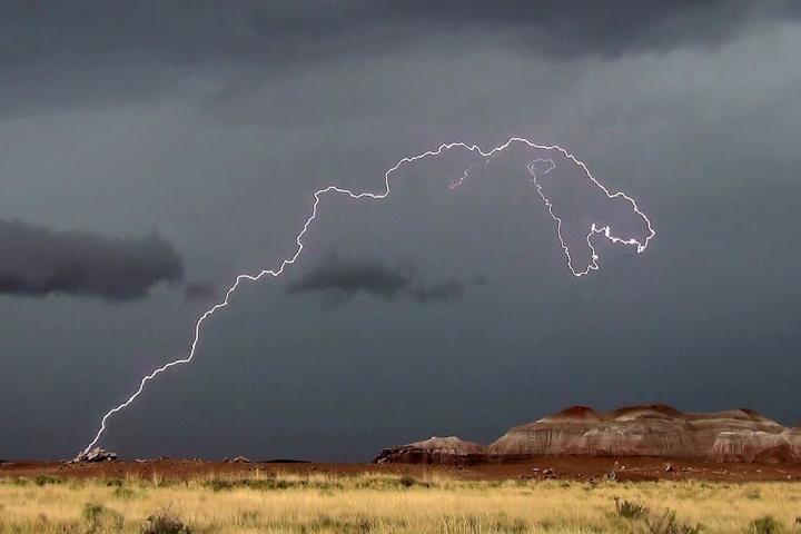 dinosaur_lightning_full_width.jpg