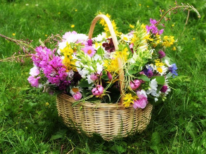 flower_basket_1280x853_full_width.jpg