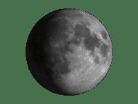 Ayın ağda görüntüsü