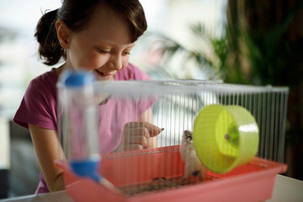 mascotas peligrosas para niños