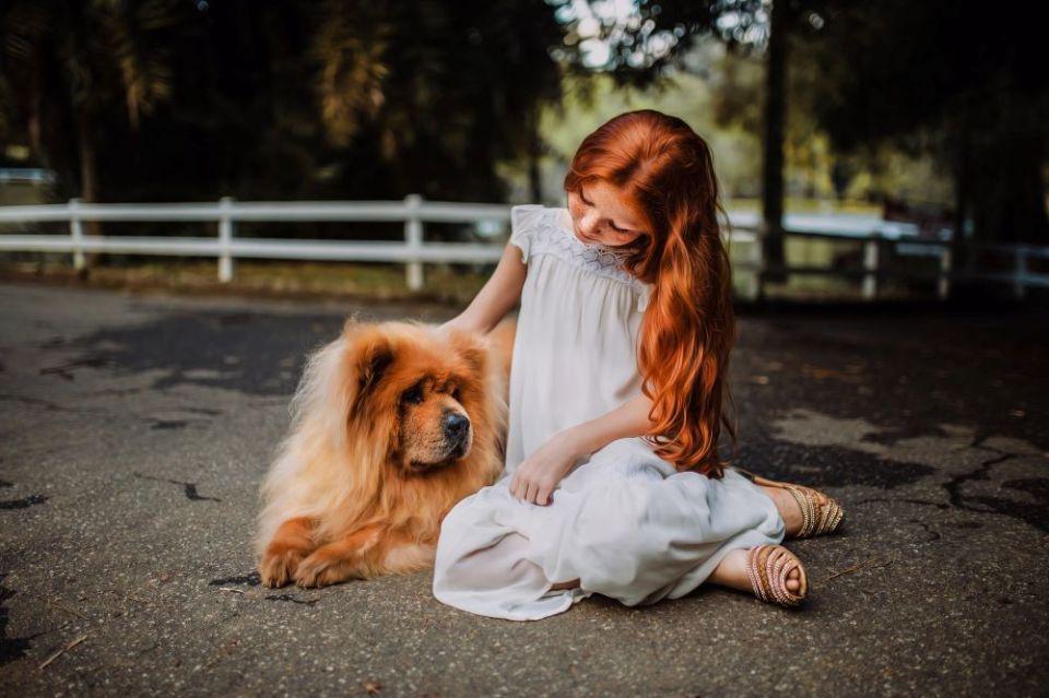 perros efecto psicológico niños