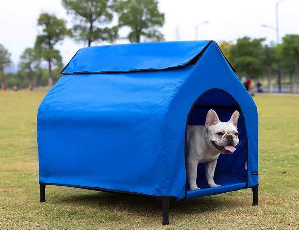 Las mejores casetas para perros de Amazon suelen venir en diferentes tamaños