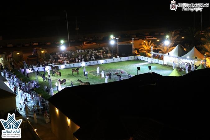 اختتام بطولة القصيم للخيل العربية وسط حضور كبير وتنافس مثير في منتجع لوذان بمحافظة المذنب