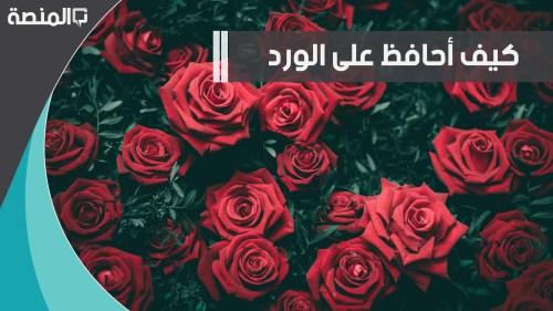 كيف نحافظ على الورد الطبيعي مدة طويلة