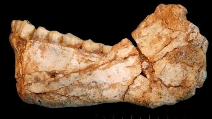 العثور على عظام أقدم أثر بشري بالمغرب