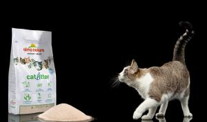 A new life – and a new cat litter – for Kit and Kat