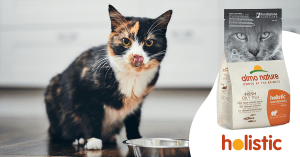 Holistic for cats: same quality, new look