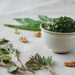 Nettle and Ramps Pesto (Dairy Free)
