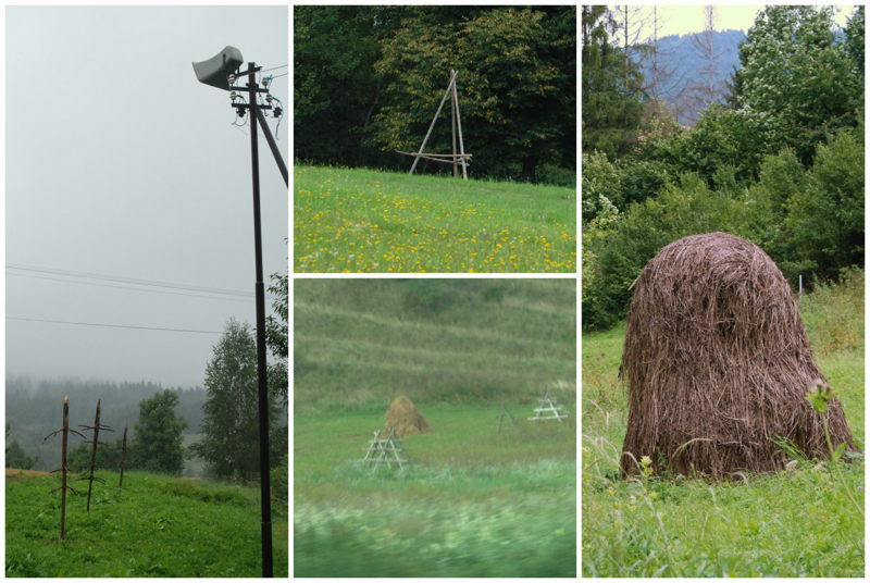 Hay Collage