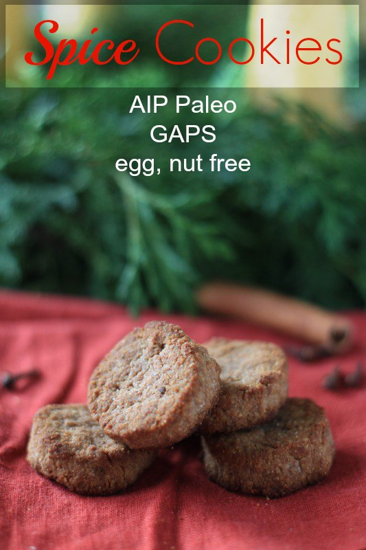 AIP Paleo Spice Cookies
