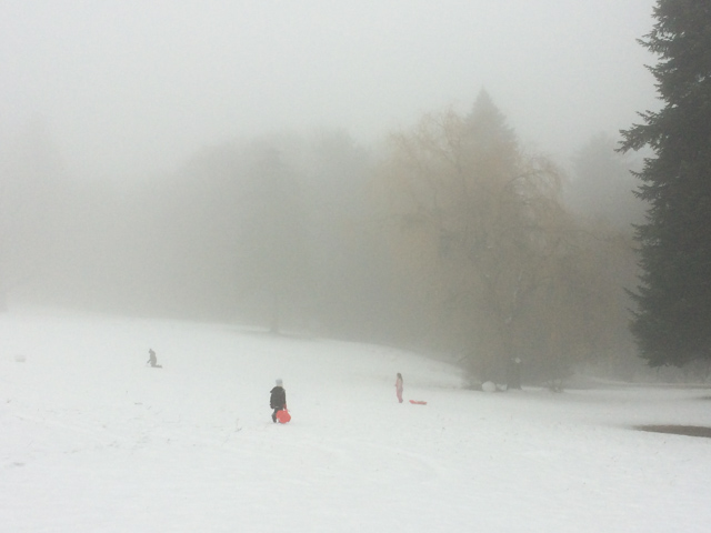 Sledding in the fog in Slovakia - Almost Bananas blog
