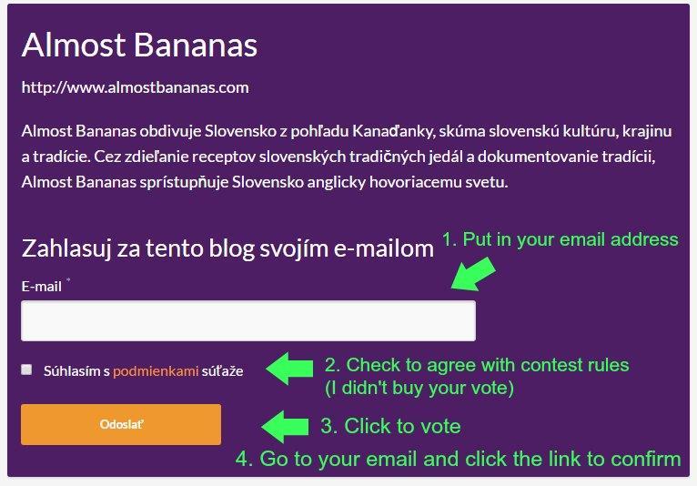 blogger roka