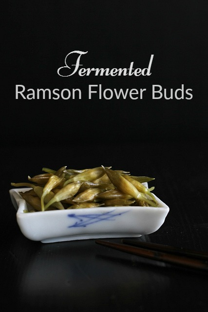 Fermented ramson flower bud recipe at Almost Bananas blog