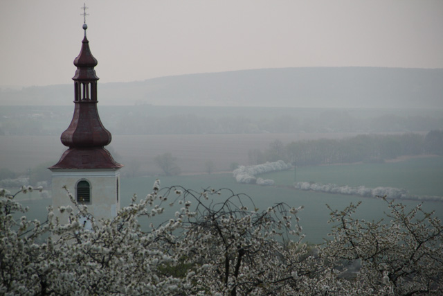 view over spring fields