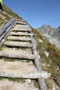 reinforced trail