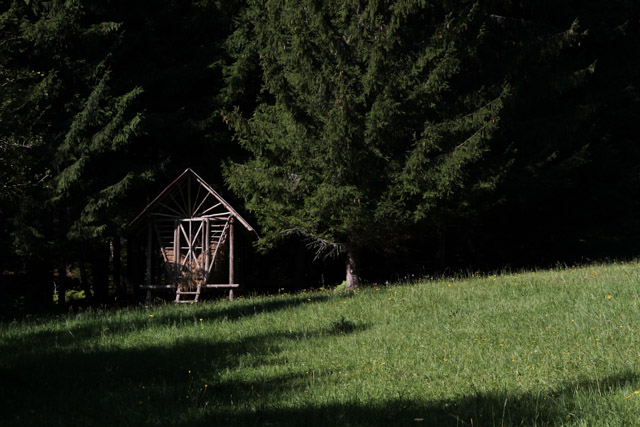 Hay left for deer