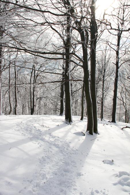 snow and sun