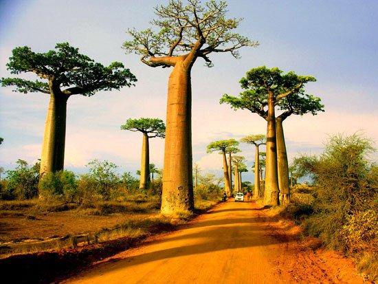 موروندافا ، مدغشقر