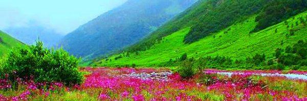 اجمل مناظر طبيعية بالهند المرسال