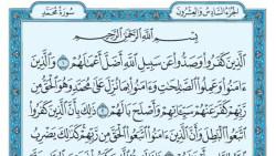 تفسير سورة محمد في المنام