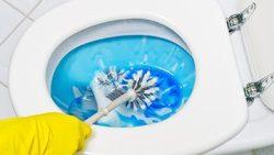 تفسير حلم رؤية تنظيف المرحاض في المنام للمتزوجة