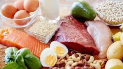 ماهي الكربوهيدرات والنشويات والبروتينات