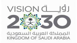 تغريدات عن رؤية 2030 محمد بن سلمان … افضل عبارات عن رؤية 2030