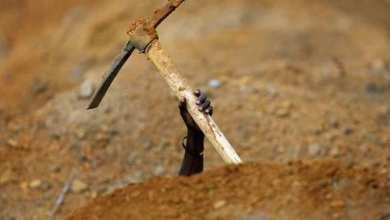 Photo of الإفتاء: لا يجوز دفن أكثر من ميت في قبر واحد إلا حال التعذر