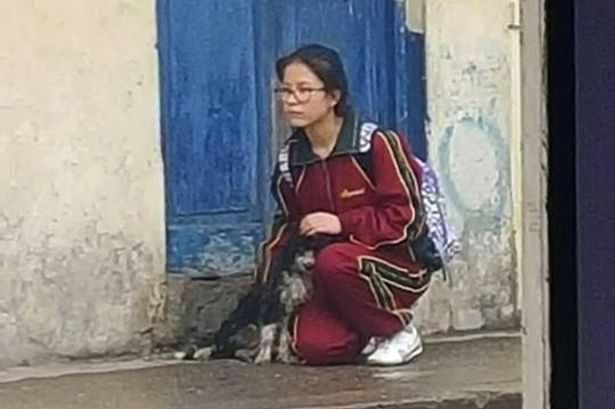 لقطة لطالبة تحمي كلبا ضالا من الأمطار تثير ضجة على الإنترنت