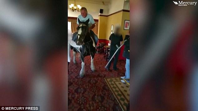 عجوز يقتحم مطعما فى بريطانيا على ظهر حصان