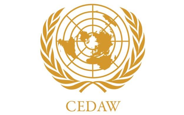 ايضاحات قانونية حول أسباب رفض اتفاقية سيداو 636664678271441850