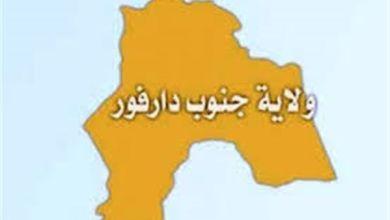 Photo of والي جنوب دارفور: سعر (الرغيفة) في نيالا بـ(10) جنيهات