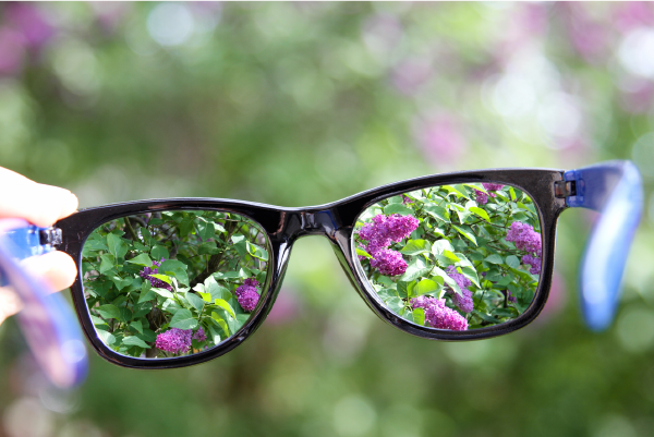 A pair of glasses held by a human hand, with flowers in focus through the lenses and out of focus outwith them