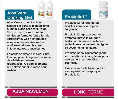Aloe Vera + Probiotiques