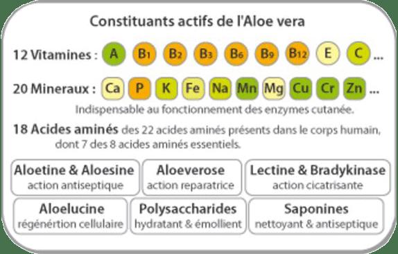 Nutriments de l'Aloe Vera
