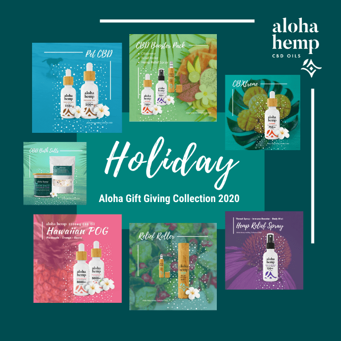 Holiday Collection 2020 - Cover - All Products!