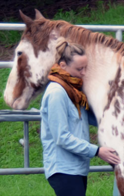 Mindfulness and Horses