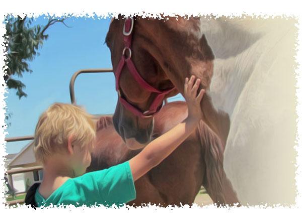 Heros Journey with Horses