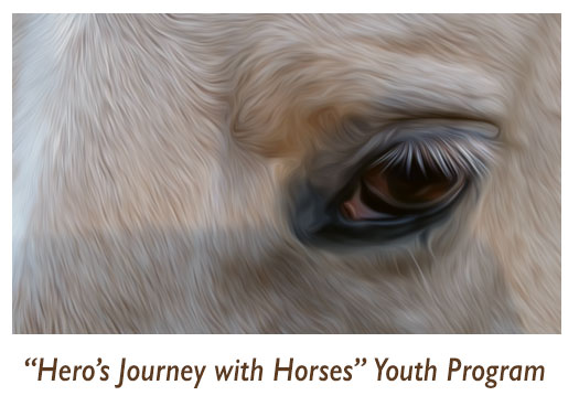 A Heros Journey with Horses